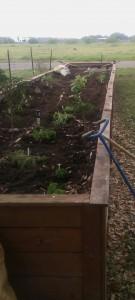 better garden view